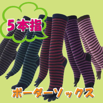 Five finger ★ striped socks.