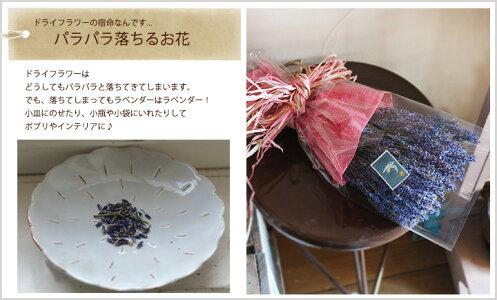 富良野ラベンダーブーケ*富良野の香りをおとどけします/おかむらさき・ラベンダー・早咲4号・ブーケ・ギフト・お誕生日・お祝い・プレゼント・母の日・ウェディング