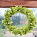 【 送料無料 】あじさいアナベルのリースS◆プリザーブドフラワー/お祝い・お誕生日・お礼・ホワイトデー・プレゼント・母の日・結婚祝い・新築祝い・アジサイ