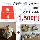 【 福袋 】プリザーブドフラワー アレンジ ・ リース ● 福袋 Happy Bag ● ナチュラルなアレンジが2個セットで1500円 数量限定 インテリア ディスプレイに◆