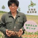 松本さんのインカのめざめ 【500g】 新じゃが ◆ 北海道富良野産 / じゃがいも 新鮮 甘い 北海道産 業務用 お試し価格
