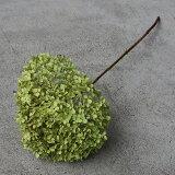 アナベル枝つき/あじさい アジサイ/国産 ドライフラワー 花材 リース 手作り 材料 素材 ナチュラル インテリア グリーン