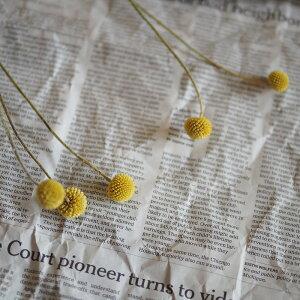 クラスペディア*ビリーボタン/ドライフラワー花材リース手作り材料素材シンプルモダンナチュラルインテリア