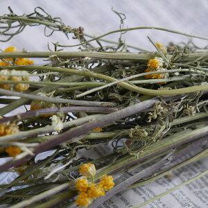 ローナス/北海道産ドライフラワー花材リース手作り国産材料素材ナチュラルインテリアハーブ黄色イエロー