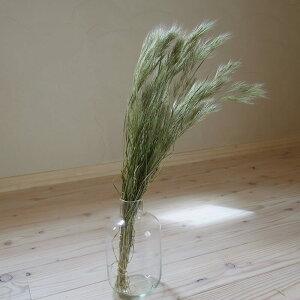 ブロムスグラス/花材・ドライフラワー・リース