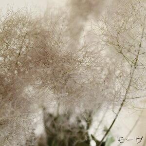【大枝丈60〜80cm】スモークツリーロング(1〜2本)◆モーヴ・グリーン・レッド/ドライフラワー花材リース手作り国産材料素材ディスプレイインテリアナチュラルシンプル
