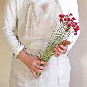 千日紅◆ラズベリーフィールド/北海道産ドライフラワー・花材・リース・手作り・国産・材料・素材・ナチュラル・インテリア