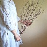 【富良野産】白樺の枝 ロング ブラウン ドライフラワー ◆ ナチュラル インテリア 素材 材料 葉物 枝もの 花材 素材 ディスプレイ 北欧インテリア シンプル 木の枝 おしゃれ