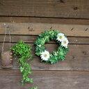 【玄関ドアにもOK!】ガーベラのリース【送料無料】アーティフィシャルフラワー(造花)/お祝い・お誕生日・お礼・ホワイトデー・プレ…