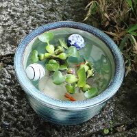 10号グリーンビードロ水鉢