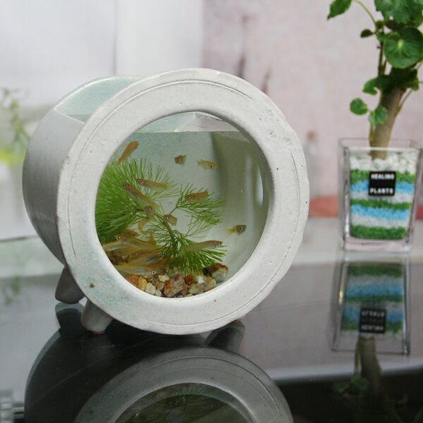信楽焼和風おしゃれ水槽陶器水槽陶器とガラスがコラボインテリア水槽金魚鉢メダカ鉢陶器水鉢めだか鉢金魚鉢鉢はす鉢睡蓮鉢su-0211