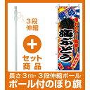 【セット商品】3m・3段伸縮のぼりポール(竿)付 のぼり旗 (2682) 海ぶどう(寿司・海鮮/ワカメ・海苔・海ぶどう)