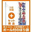【セット商品】3m・3段伸縮のぼりポール(竿)付 ご当地のぼり旗 和歌山の郷土料理 (SNB-78)