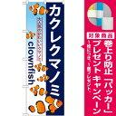 のぼり旗 カクレクマノミ [プレゼント付](業種別/ペットショップ/熱帯魚・鯉)
