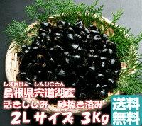 島根県宍道湖産大和しじみ(活き)2Lサイズ3Kg