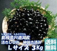 島根県宍道湖産大和しじみ(活き)Lサイズ3Kg