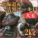 歯ごたえコツコツ、甘みたっぷり!北海道のデカ黒ホッキ貝!食べごたえあります♪北海道の大玉...