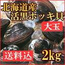 歯ごたえコツコツ、甘みたっぷり!北海道のデカ黒ホッキ貝!食べごたえあります♪【送料込】北...