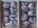 栄養たっぷりの果実プルーン。プルーンの中では最も糖度が高い小粒品種「シュガー」をお届けし...