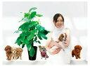 H1 【トイプードルと観葉植物】ウォールステッカーウォールステッカーシール 北欧激安はがせる壁紙プードル/チワワ/観葉植物/犬
