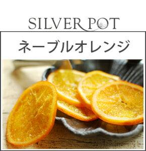 お茶請け ネーブル オレンジ