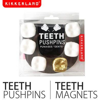 金歯入りの6本セット!押しピンと磁石【KIKKERLAND/キッカーランド】歯のプッシュピン・マグネ...