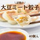 大豆ミート餃子 ベジタリアン 40個ベジタリアン餃子 餃子