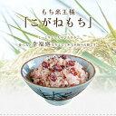 特別栽培米 2kg こがねもち 山形県産 お餅 もち米 お歳暮 御中元 玄米・精米