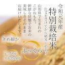 令和2年産 特別栽培米の 《こがねもち》 5kg  山形県産 もち米 《玄米か白米お選び頂けます!》 お餅 お歳暮 御中元 玄米 精米 赤飯 おこわ 国産 餅 お餅 3