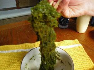 ミネラル、食物繊維、ポリフェノール等が豊富に含まれる、大注目のスーパー海藻!!アカモクトロ...