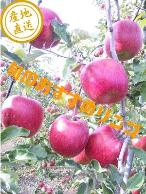 【送料無料】【りんご】【訳あり】新品種ドルチェ、秋映、シナノスイート、《シナノゴールド《王林》《あいかの香り》《完熟サンふじ》等、各10キロ家庭用
