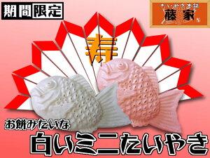 白いミニたいやき(40匹入り) たいやき たい焼き タイヤキ 鯛焼き 贈答品 スイーツ 引き菓子 ...