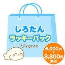 【送料無料】 キムヒョンジュン SS501 デニム トートバッグ 韓流 グッズ(dp055-2)