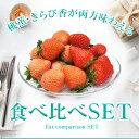 【送料無料】【セット】【静岡産希少品種 ブランドいちご きら
