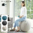 Vivora Sitting Ball LUNO CHENILLEビボラ シーティングボール シェニール(65cm バランスボール クッション ヨガボール エクササイズボール ダイエット シッティング トレーニング) 1