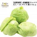 【送料無料】【産地厳選】大玉キャベツ L〜3Lサイズ 約10