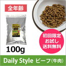 DailyStyleビーフ全年齢用お試し品100g