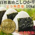 送料無料静岡こしひかり10kgおいしさ証明Sランク農薬、化学肥料不使用の安心米