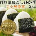 静岡こしひかり2kgおいしさ証明Sランク農薬、化学肥料不使用の安心米