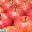 [ポイント5倍] ふじ 訳あり5kg箱(14〜23個)(青森県 さいとうりんご園)特別栽培減農薬りんご・送料無料・産地直送・お徳用