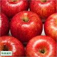 ふじ 小玉秀品5kg箱(16〜24玉)(青森県 田村りんご農園)特別栽培減農薬りんご・送料無料・産地直送・贈答用・ギフト