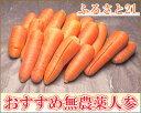 【訳あり】 にんじん 5kg箱 農薬不使用 (ふるさと21)