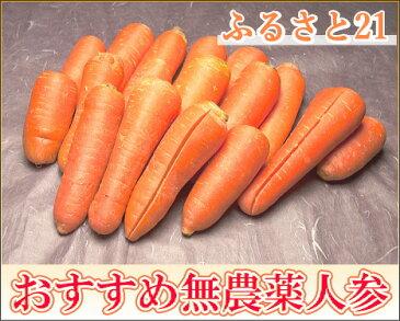 【規格外加工用人参】 にんじん 5kg箱 無農薬(ふるさと21)