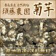 菊芋 (土付き) 5kg (青森県 須藤農園) 自然栽培 無農薬 イモ 産地直送 送料無料 無化学肥料