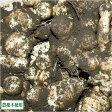 菊芋(土付き) 10kg(青森県 須藤農園)自然栽培 無農薬イモ・産地直送・送料無料・無化学肥料