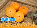 急速冷凍赤ちゃんみかん 1.5kg(佐賀県 佐藤農場株式会社)無農薬柑橘・送料クール冷凍便無料・産地直送