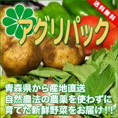 アグリパックM(青森 アグリメイト南郷)自然農法 無農薬野菜詰め合わせパック・野菜セット・産地直送