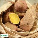 安納芋 M?Lサイズ 5kg(鹿児島 濱川和成)種子島・県特別栽培・無化学肥料さつまいも・送料無料・産地直送