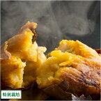 【売尽しセール】【クール冷凍】【小玉】焼き芋(安納芋) 約800g×10袋(鹿児島 濱川和成)種子島・県特別栽培・無化学肥料さつまいも・送料無料・産地直送