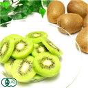 【予約商品】石綿キウイフルーツ 約1.7kg 有機JAS (神奈川県 石綿 敏久) 産地直送